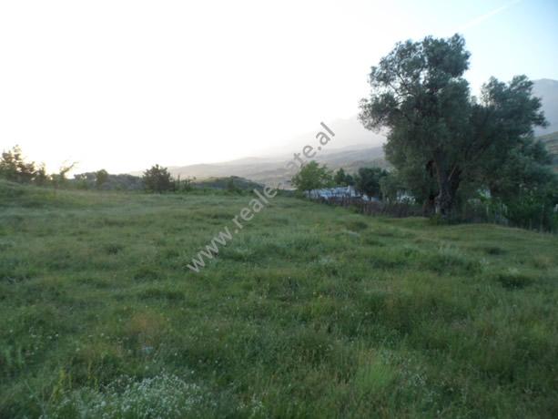 Land for sale in Berzhite village, Tirana , (TRS-712-5)