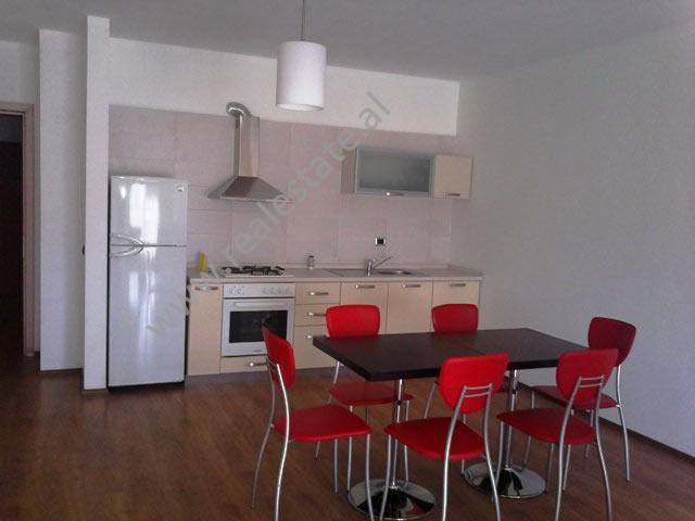 Apartament 2+1 me qera ne rrugen e Bogdaneve ne Tirane, (TRR-1012-13)