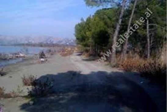 Toke truall per shitje ne Lagunen e Kunes ne Shengjin, (SHS-1212-1)
