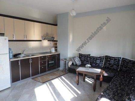 One bedroom apartment for rent in Misto Mame area in Tirana, Albania (TRR-818-44E)