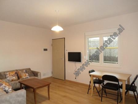 Apartament 1+1 me qera tek zona e Pallatit te Sportit Asllan Rusi ne Tirane (TRR-1018-5E)