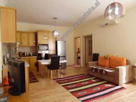 Apartament 1+1 me qera prane Kopshtit Zoologjik ne Tirane (TRR-1018-10L)