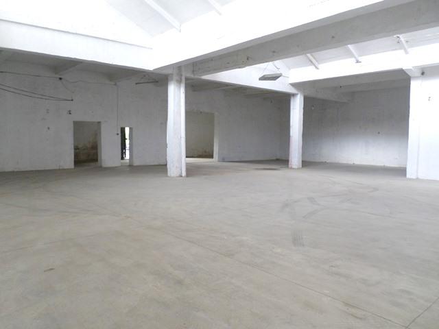 Warehouse for rent near Kombinati area in Tirana, Albania (TRR-519-57T)