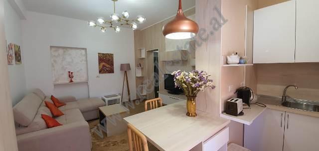 Apartament 1+1 me qira ne rrugen Frosina Plaku ne Tirane