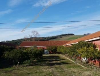 Toke dhe Mobilieri per shitje te Shetitorja e Palmave ne Lushnje. Pozicionohet buze rruge kryesore