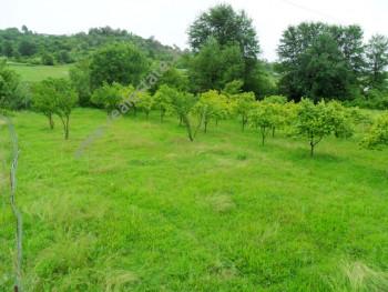 Land for sale in Prush area in Tirana.