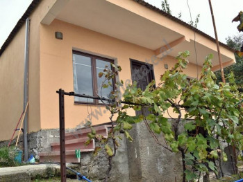 One storey villa for rent in Todi Shkurti street close to student area  in Tirana, Albania.