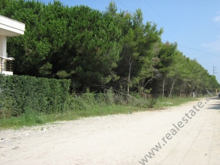 Land for sale near Mali i Robit, Kavaje, Albania. The land is positioned about 300m away from the s