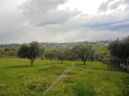 Land for sale near Qendra Boterore Bektashiane in Tirana.  Positioned 50 meters from the m