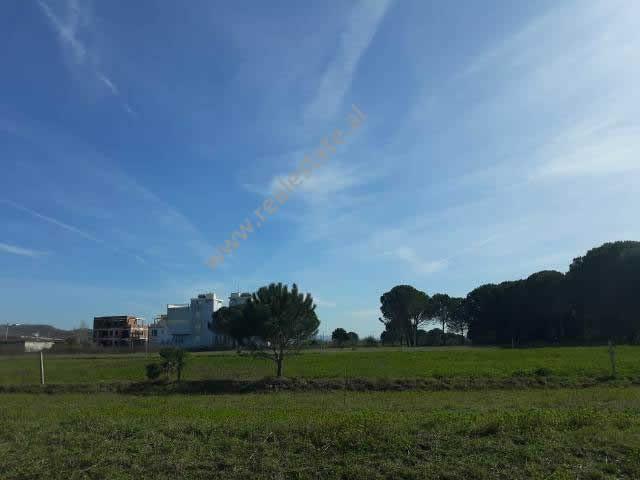 Toke per shitje ne Gjirin e Lalzit, prane plazhit San Pietro. Ka nje siperfaqe prej 1000 m2 dhe ndo