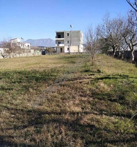 Toke per shitje ne rrugen Albanet ne Tirane. Ka nje siperfaqe prej 2000 m2 dhe eshte e organizuar n