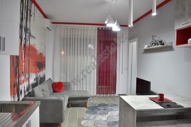 Two bedroom apartment for rent in Frosina Plaku street in Tirana.