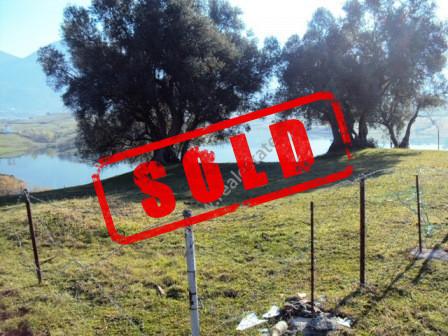 Toke ne shitje ne zonen e Farkes se Vogel ne Tirane, tek Liqeni Farkes.  Komuna e Farkës &eum